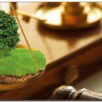 Земельные споры. Опыт адвоката